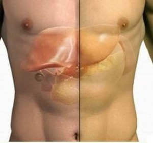 Si të mbrojmë melçinë?