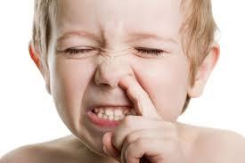 Kruajtja e hundës e rrezikshëm për shëndetin